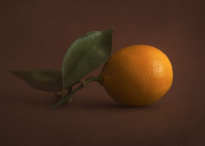 Meyer Lemon by Heather Hiner
