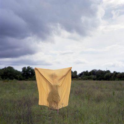 McCarty- golden veil