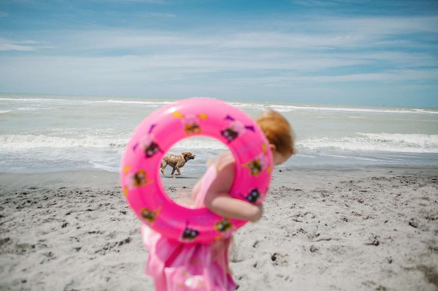 Dog Beach by Lauren Mitchell