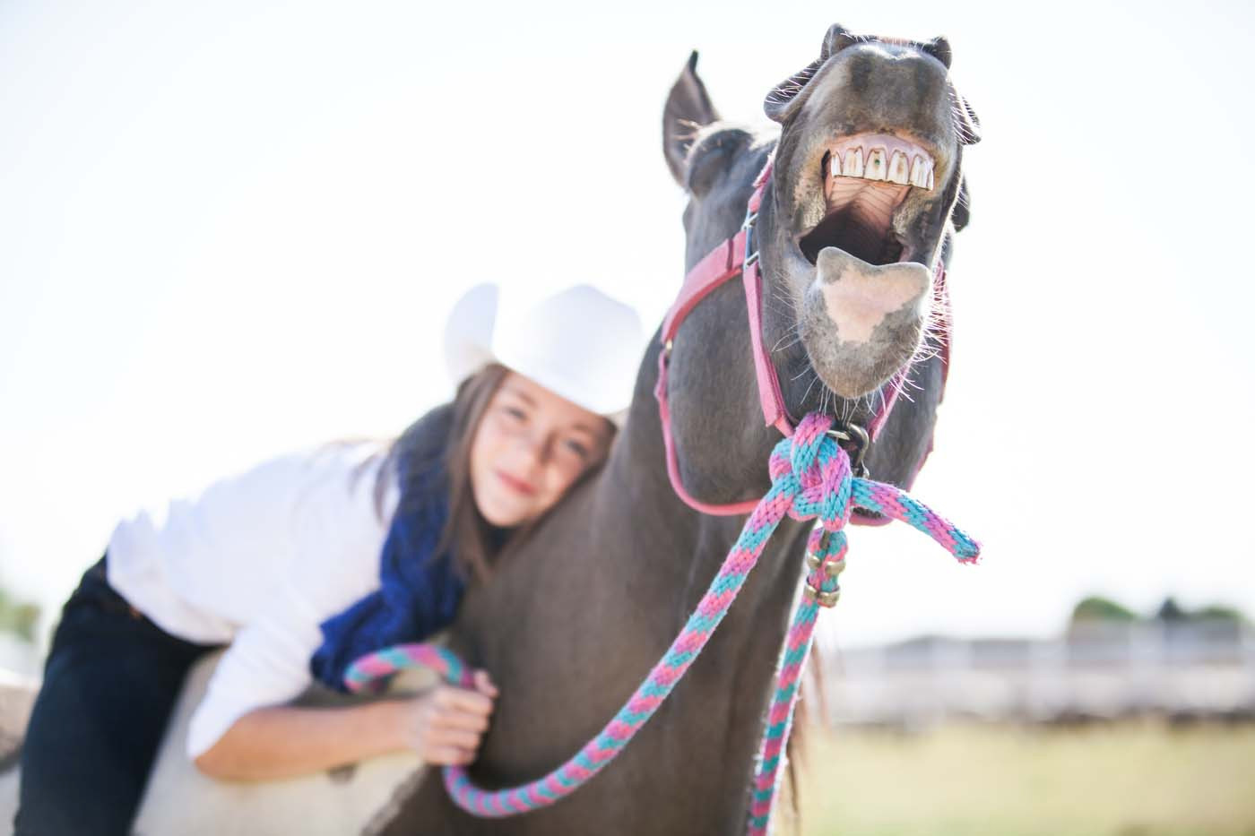 Laughing Horse by Kim Hildebrand