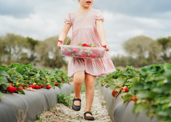 'Strawberry Girl' by Laura Mood