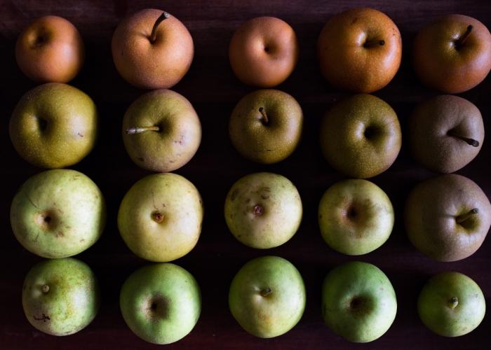 'Gleaned Fruit' by Anna Christine Larson