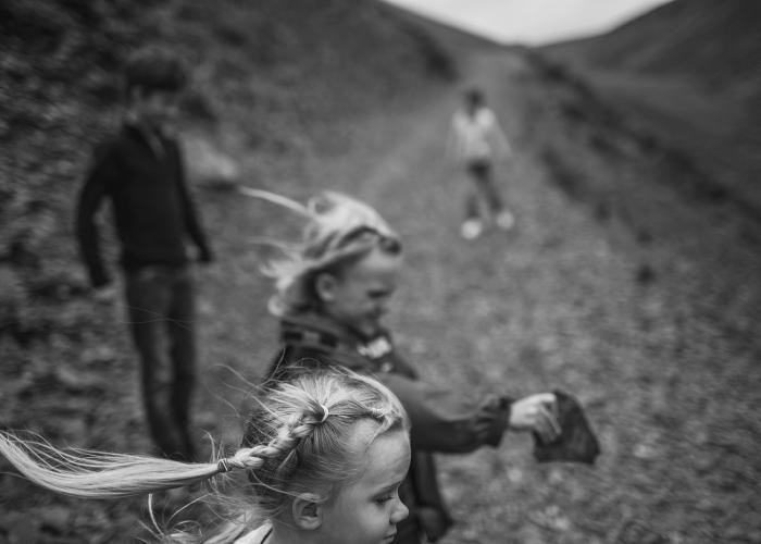 'Windswept' by Tamryn Jones