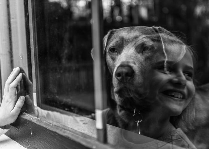 'Reflecting' by Jackleen Leed