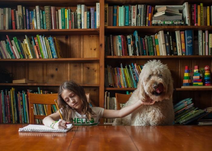 'Study Partner' by Erin Borzellino