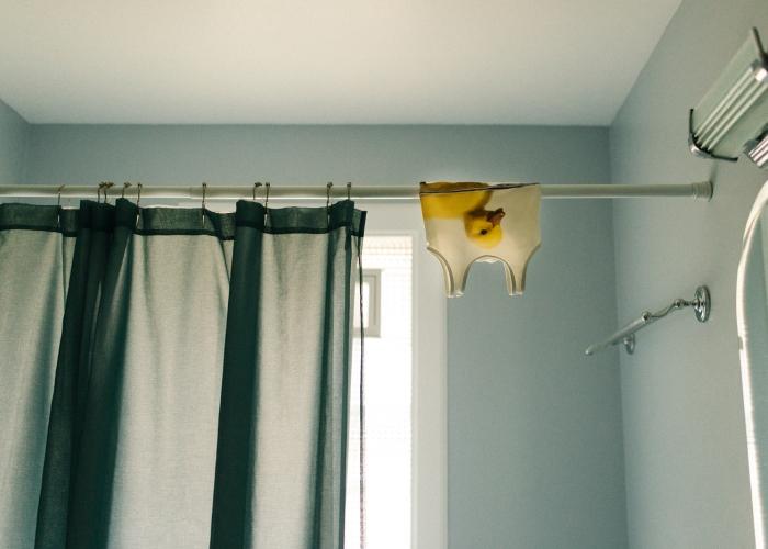 'Little Duck' by Erica Caligiuri