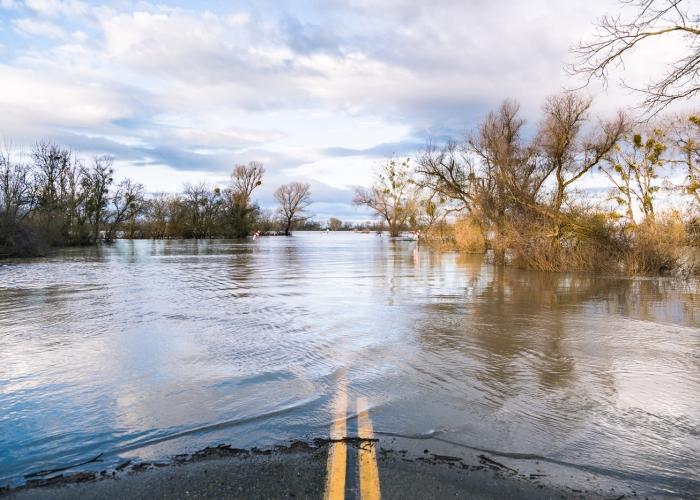 Flynn_Flooded Road