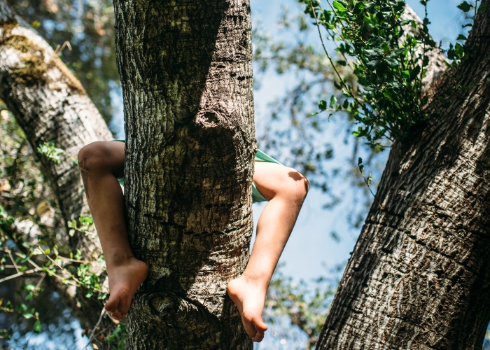 CelesteL-out on a limb-Strength