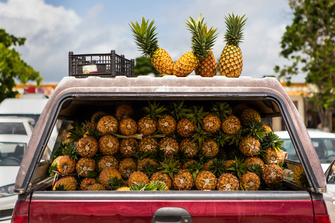 KeeneS-PineapplesforSale-CultureTravel