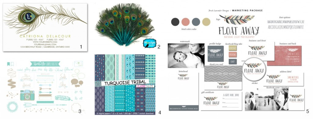 branding ideas with feathers