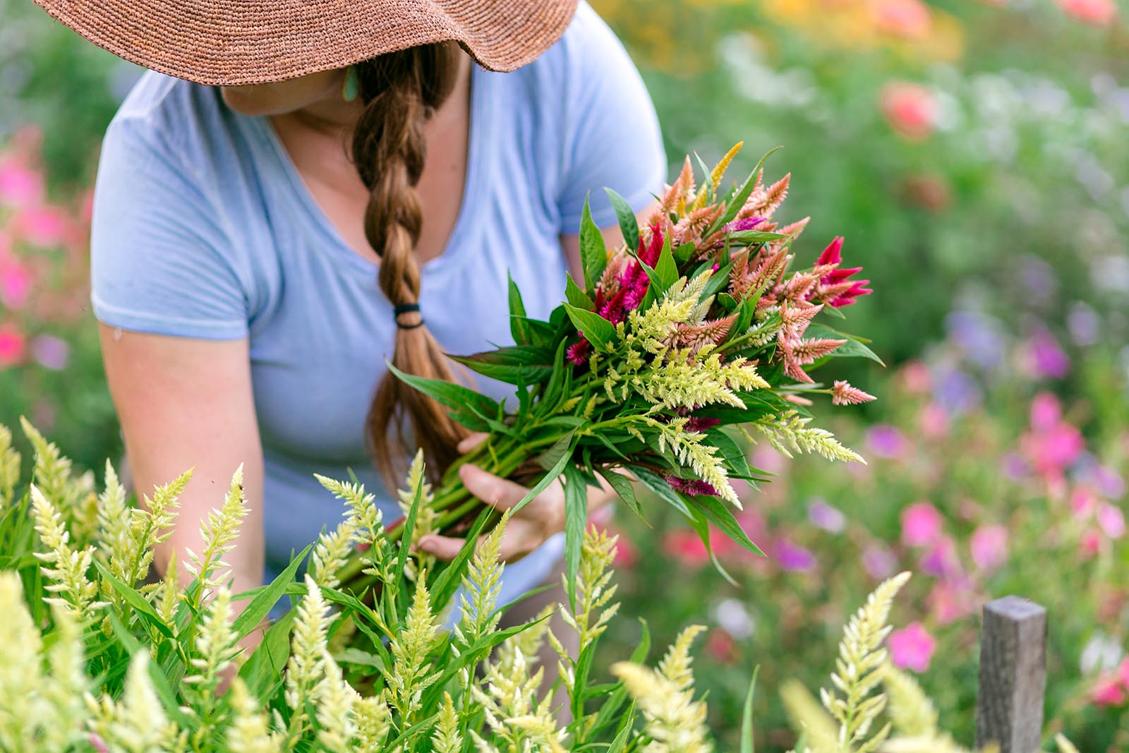 headshot of woman picking flowers, determine photography pricing