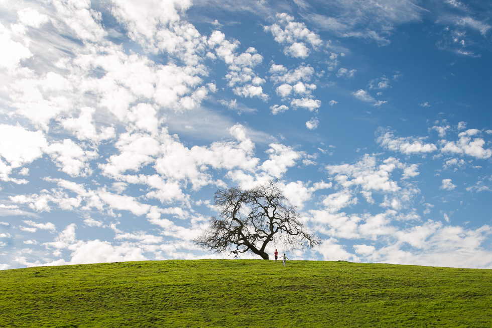 outdoor picture of two boys running towards a solitary tree by Kristin Dokoza