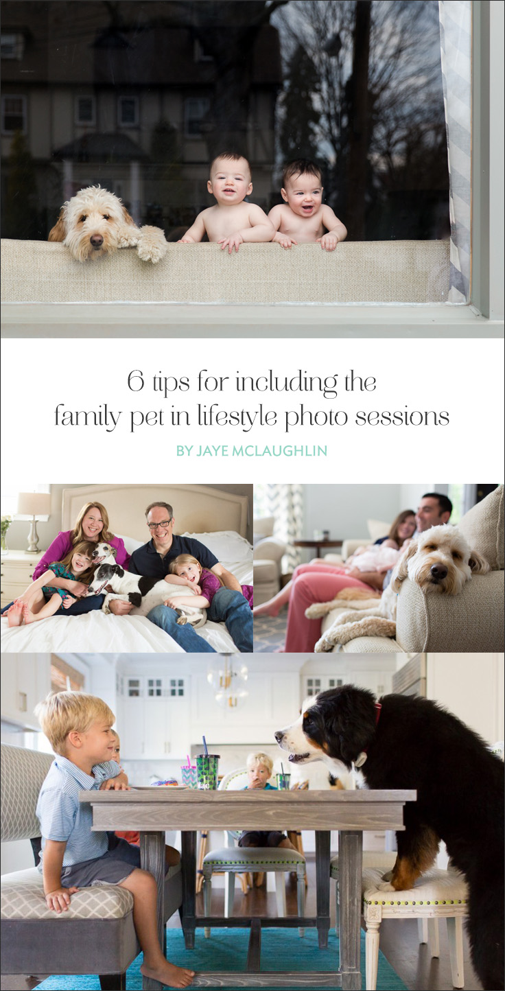 For every in-home family session is to document the current chapter of the family's life and all the characters of the story including the family pet!