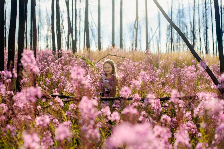 backlit photo of girl standing in a field of purple flowers by Charlaine Williams