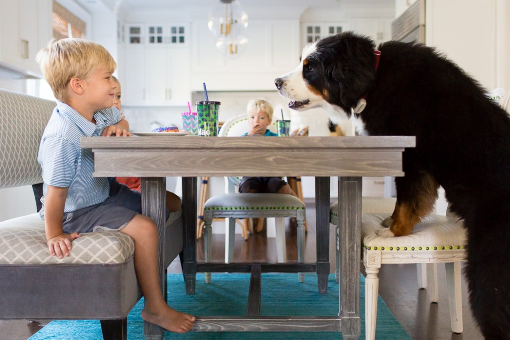 kids sitting at the kitchen table with a large dog by Jaye McLaughlin