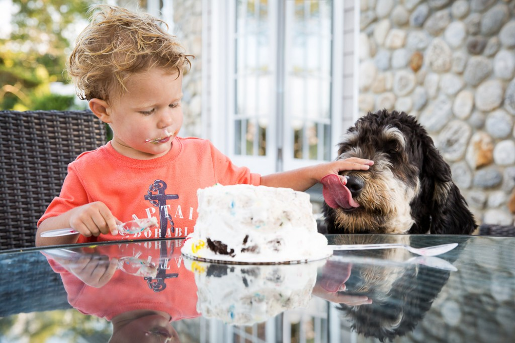 picture of a young kid and dog eating cake by Jaye McLaughlin