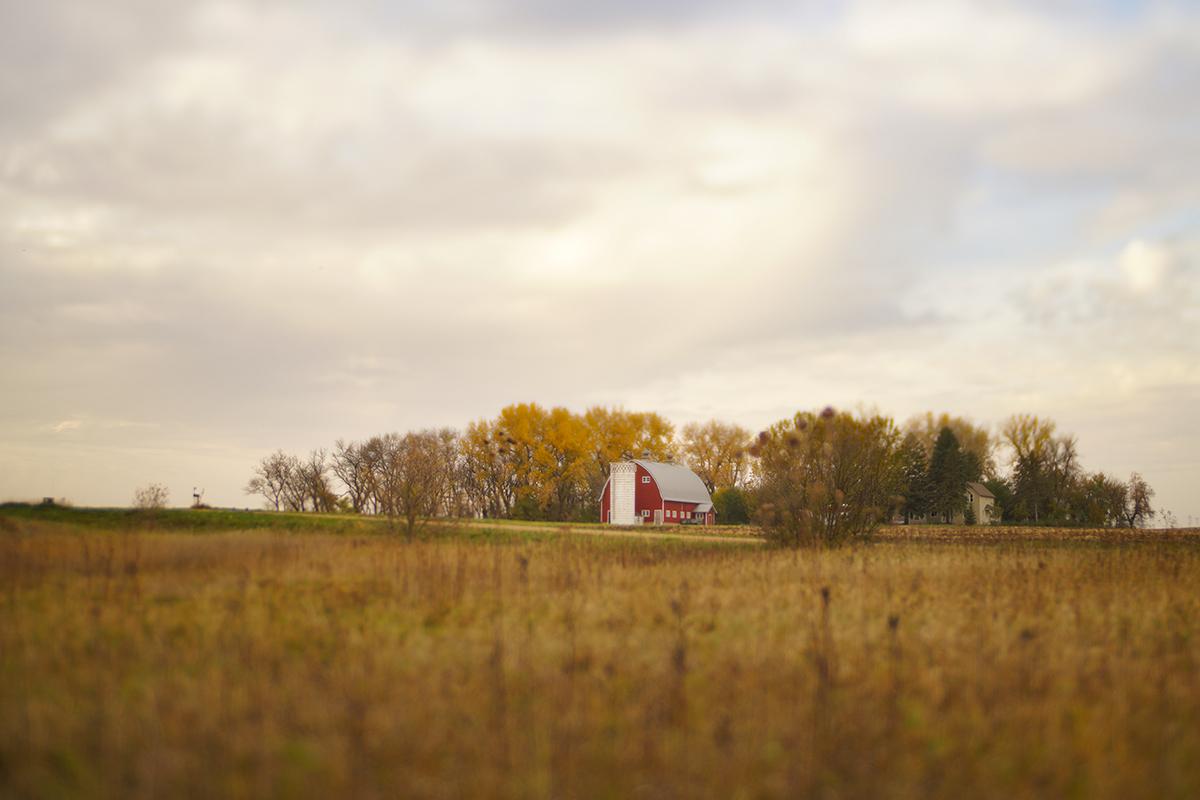 Prairie Landscape photo with red barn by Caroline Jensen