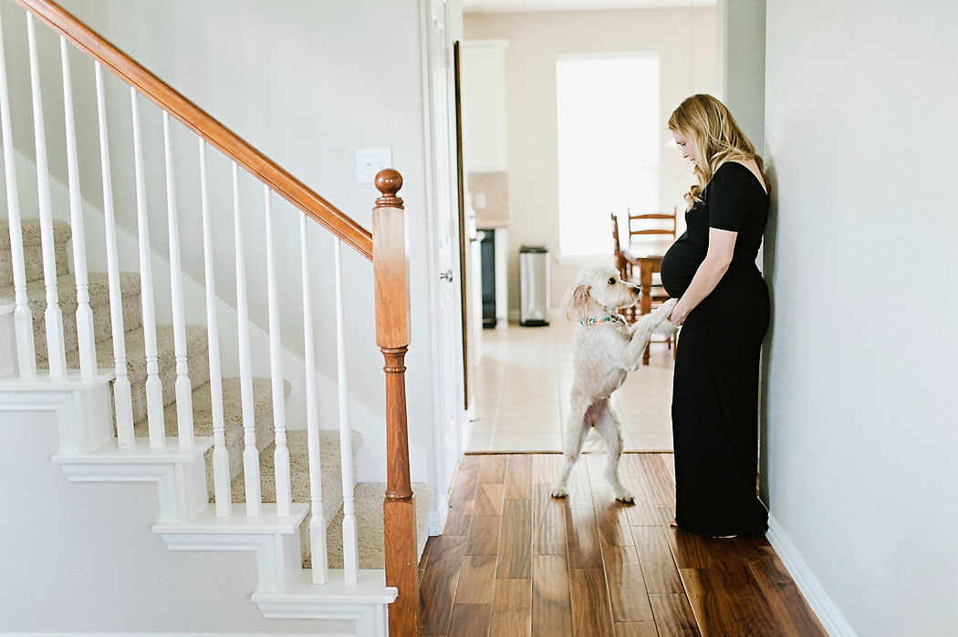 maternity picture with a dog by Erica Williams