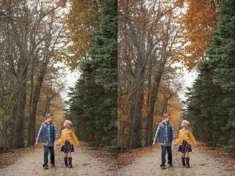 how to edit trees in Photoshop to make them look more like fall by Mickie DeVries