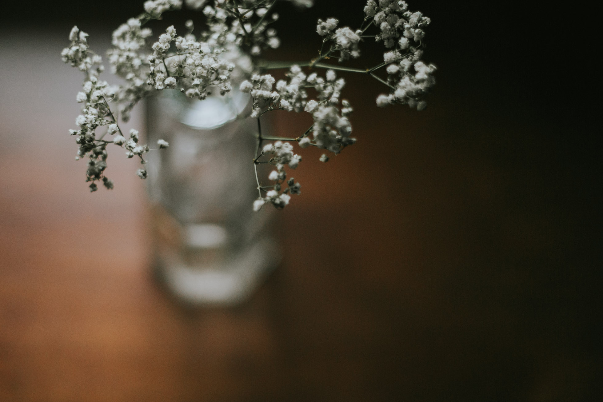 babys breath in a jar by Cassandra Casley