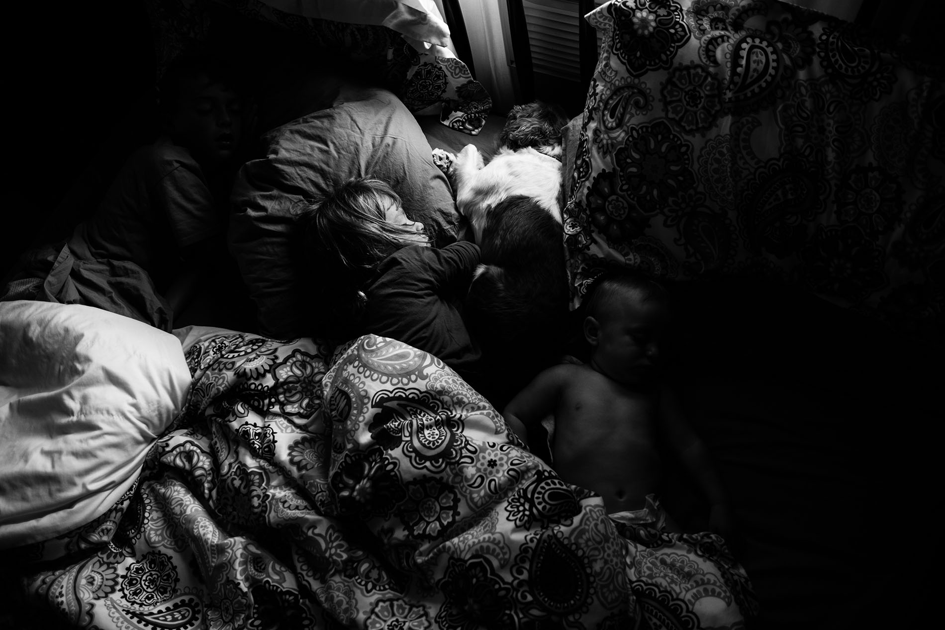 black and white picture kids and dog sleeping by Jessica Svoboda