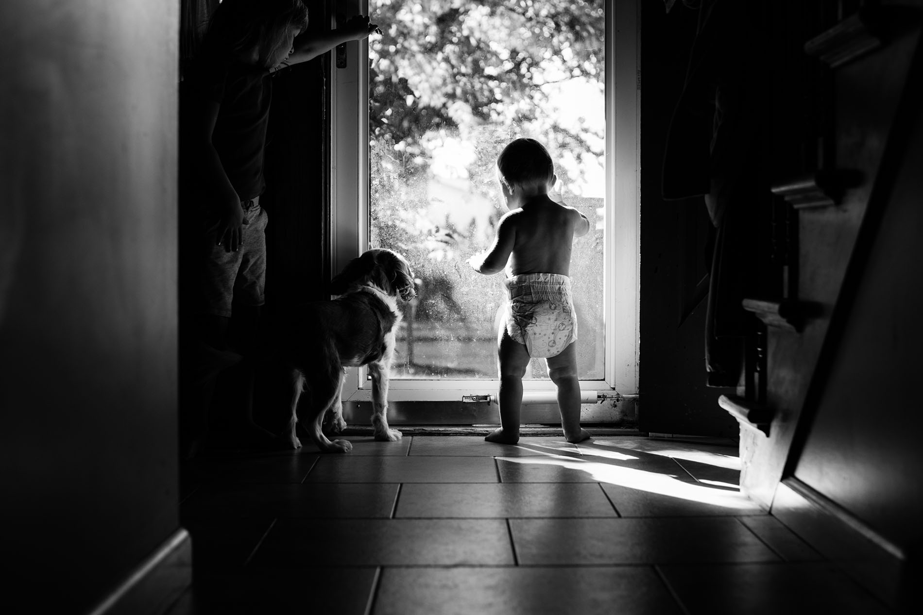 black and white picture of boy and dog looking out a door by Jessica Svoboda