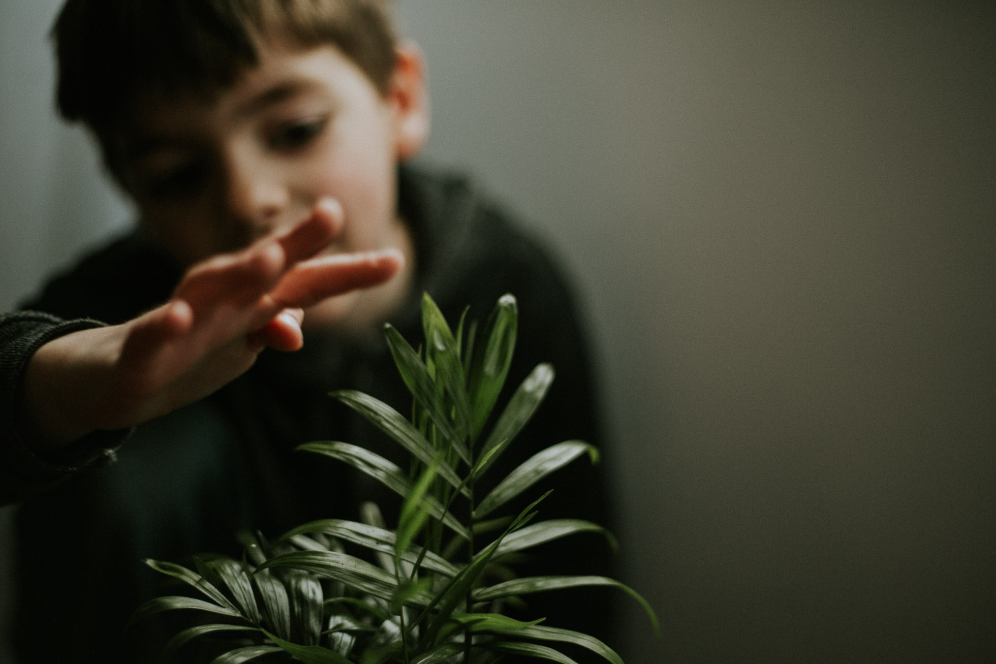 picture of boy touching plant by Cassandra Casley