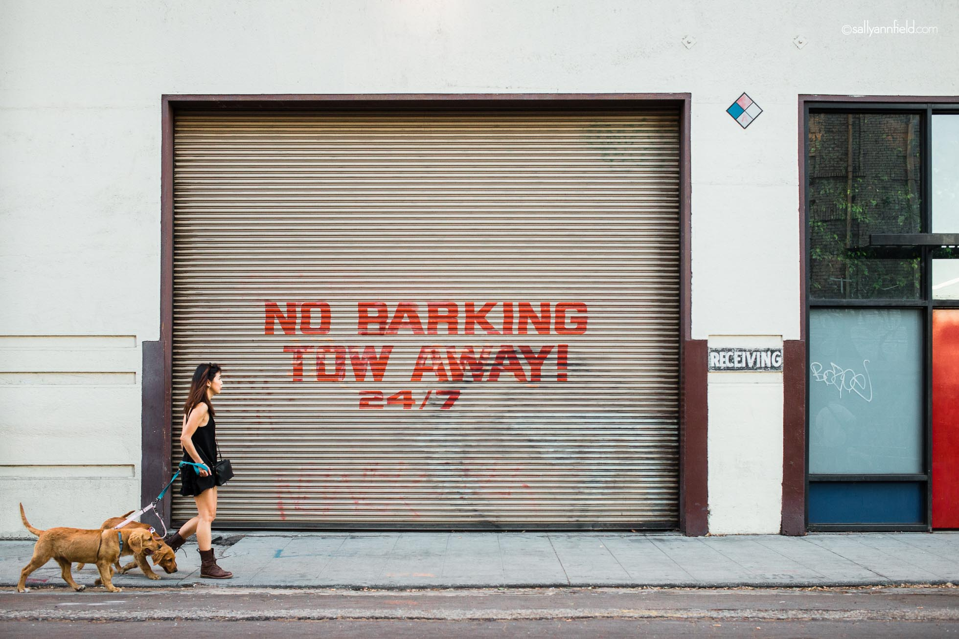 picture of woman walking a dog by a no barking sign by Sally Ann Field