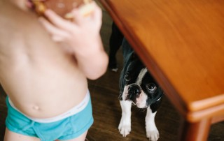 picture of dog watching a boy eat by Sarah Lalone