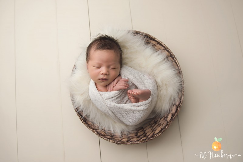 Learn how newborn photographer Ashley Fitzgerald converted her garage into a photo studio!
