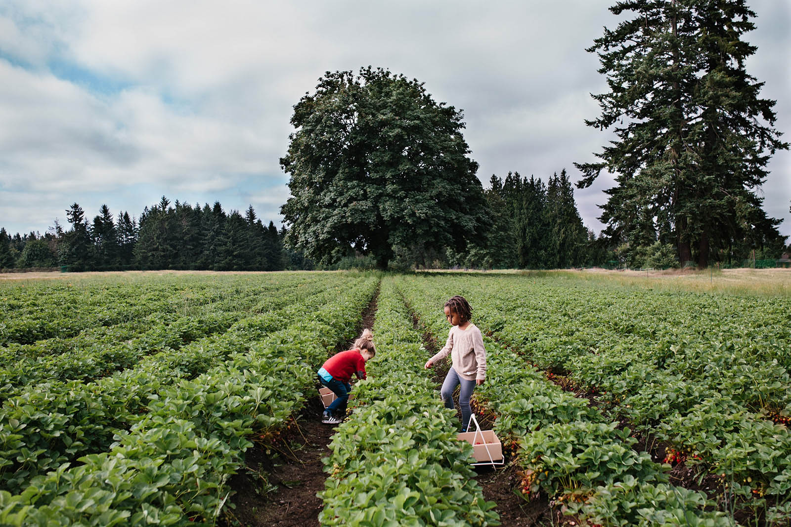 The summer months offer up countless opportunities to infuse your lifestyle sessions — with clients or your own brood — with color, whimsy and pure joy. To help you plow this rich loam, we're planting a few ideas, from the sublimely simple to the ridiculously complex. (Bonus: These'll keep the kids occupied for a minute, too.)