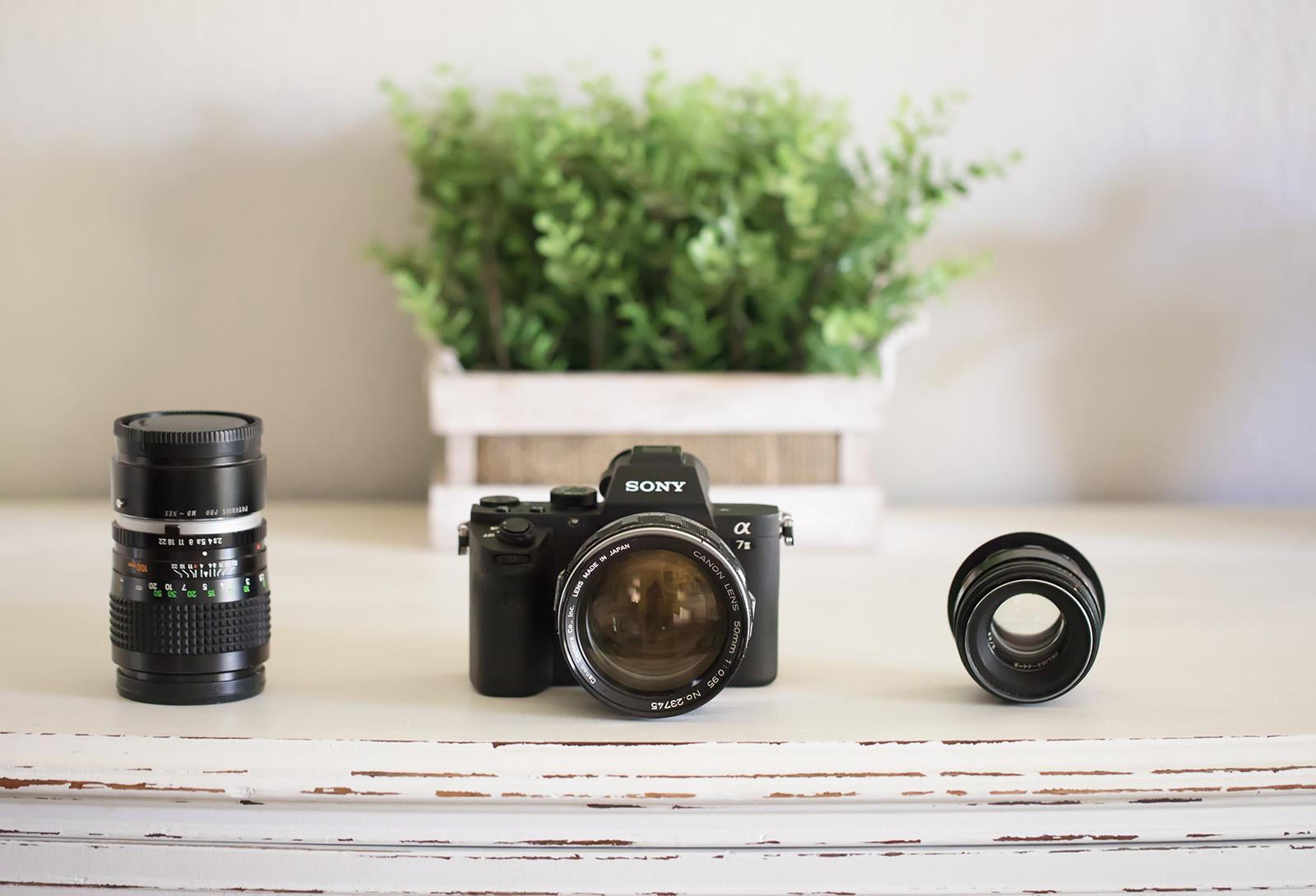 5 Reasons using vintage camera lenses will change your photography