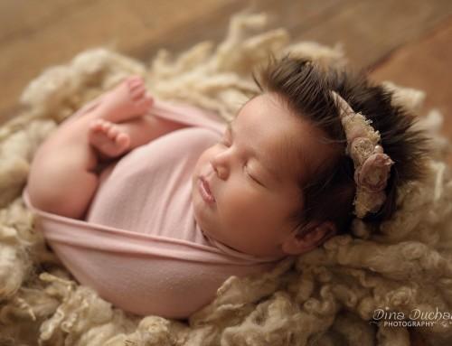 A beginner's guide to newborn posing & studio lighting