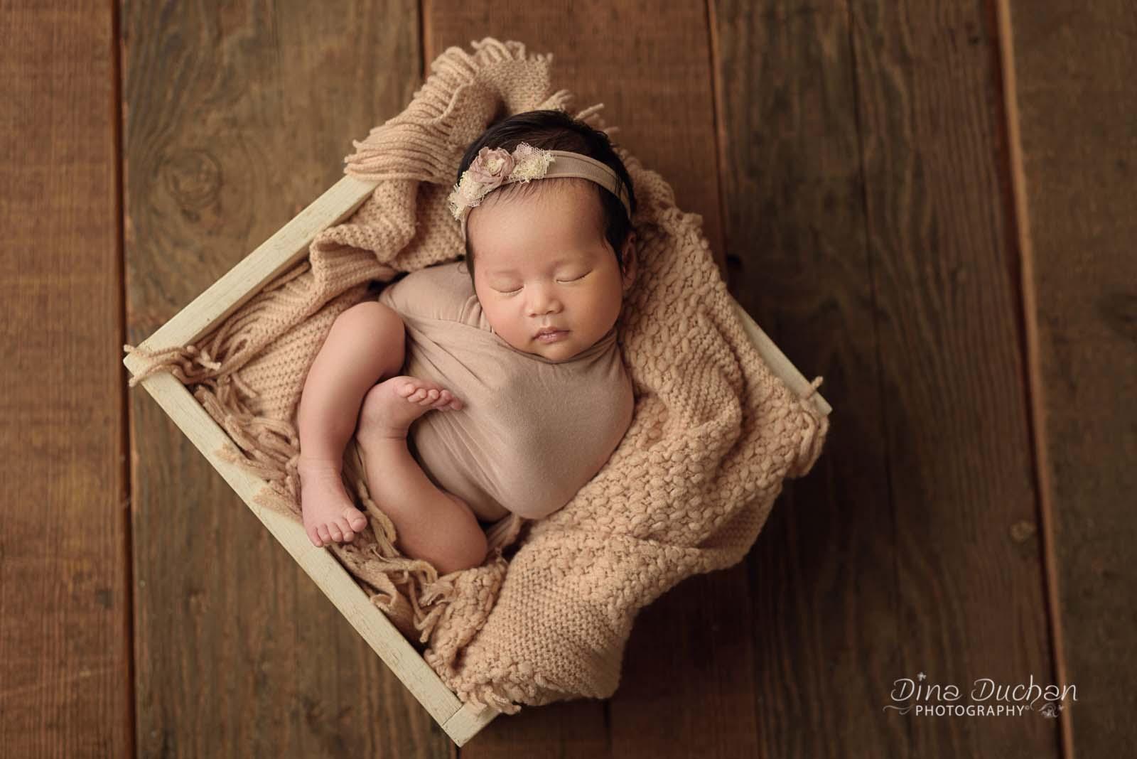 A beginners guide to newborn posing studio lighting