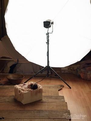 studio lighting example with baby laying under umbrella light