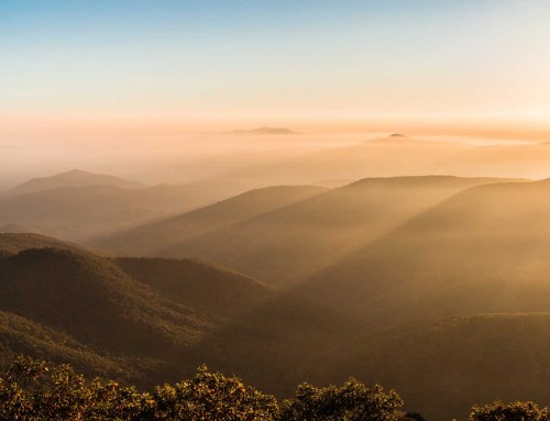 5 Tools to up your landscape photography game