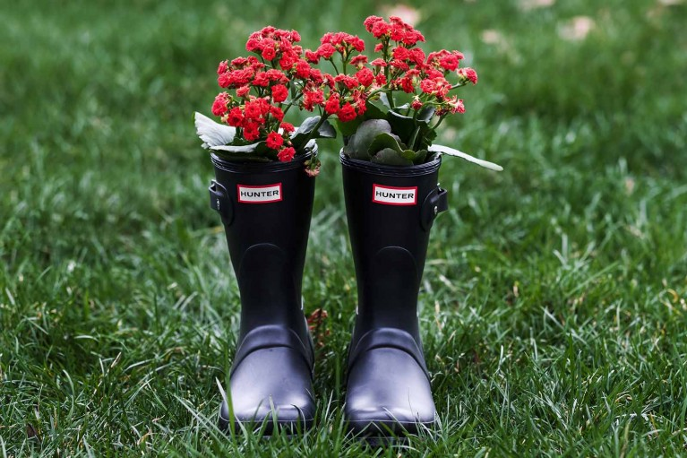 Hunter boots with flowers inside, spring boots for photogrpahers