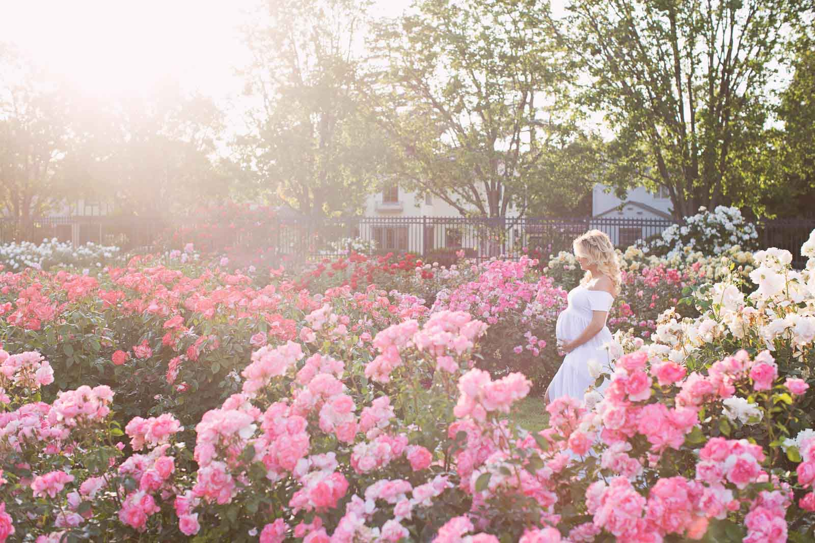 A pregnant woman stands in a field of pink flowers in San Jose, California