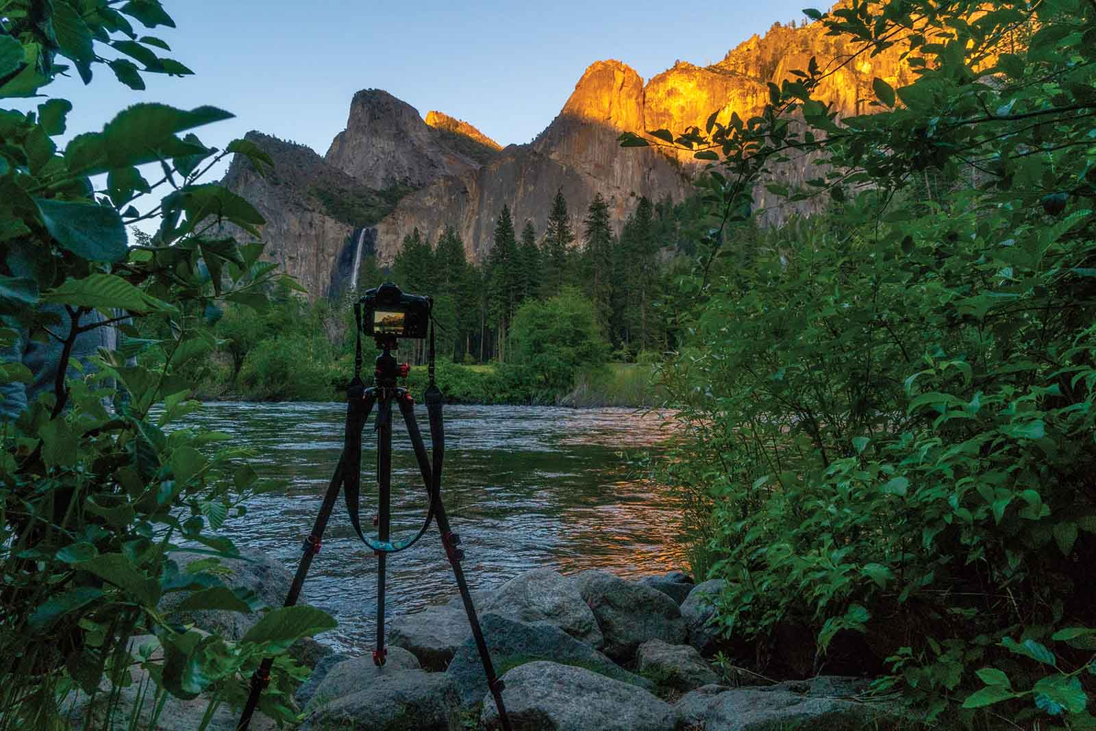 The ProMaster SP 425CK Professional Tripod in action