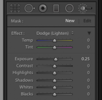 Lightroom brushes