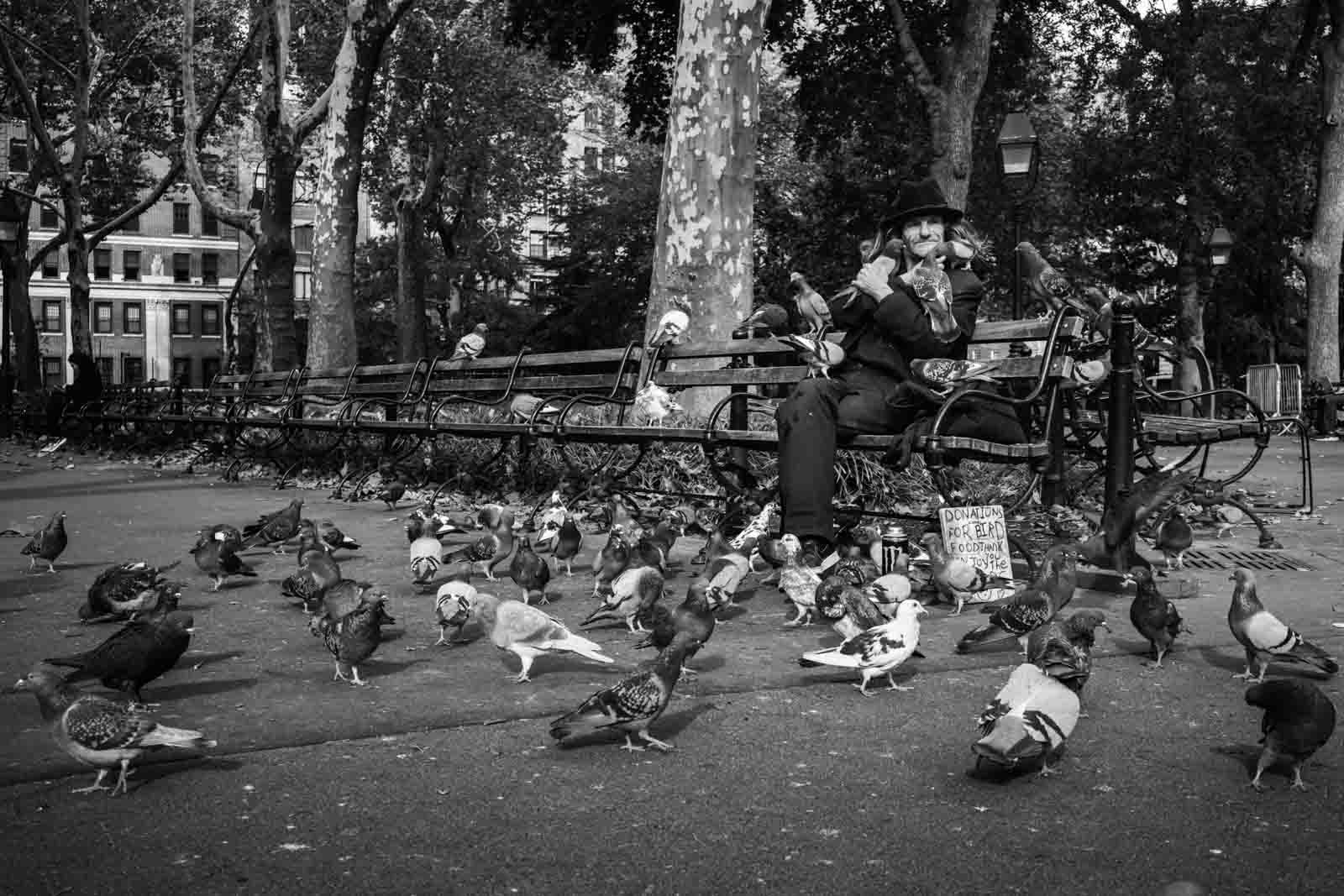 Man surrounded by pigeons in a street photo
