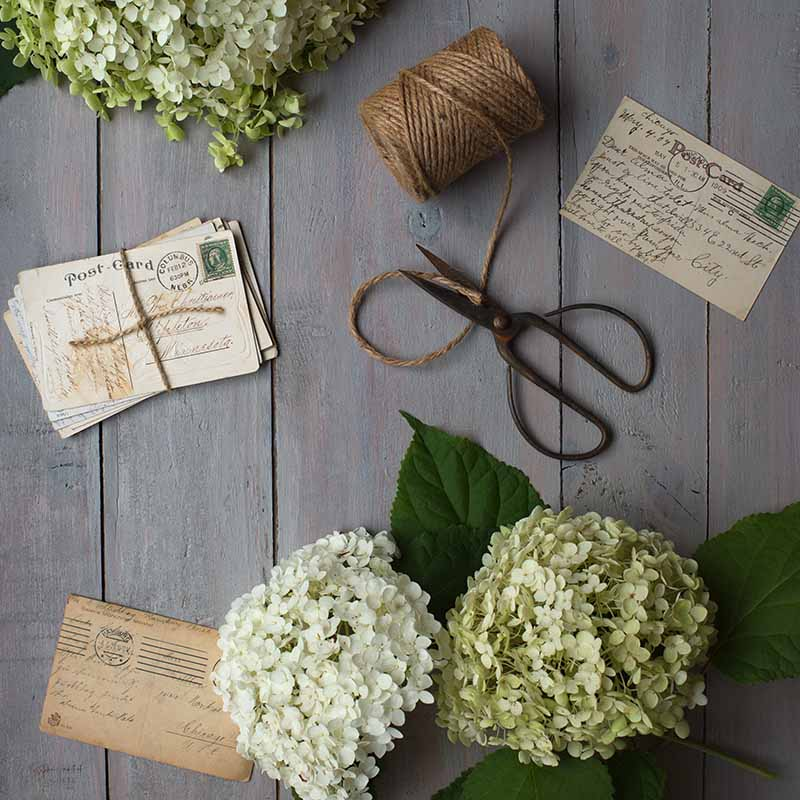 Barn wood makes a great flat lay background