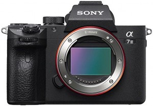 Sony a7RIII mirrorless camera for travel photography