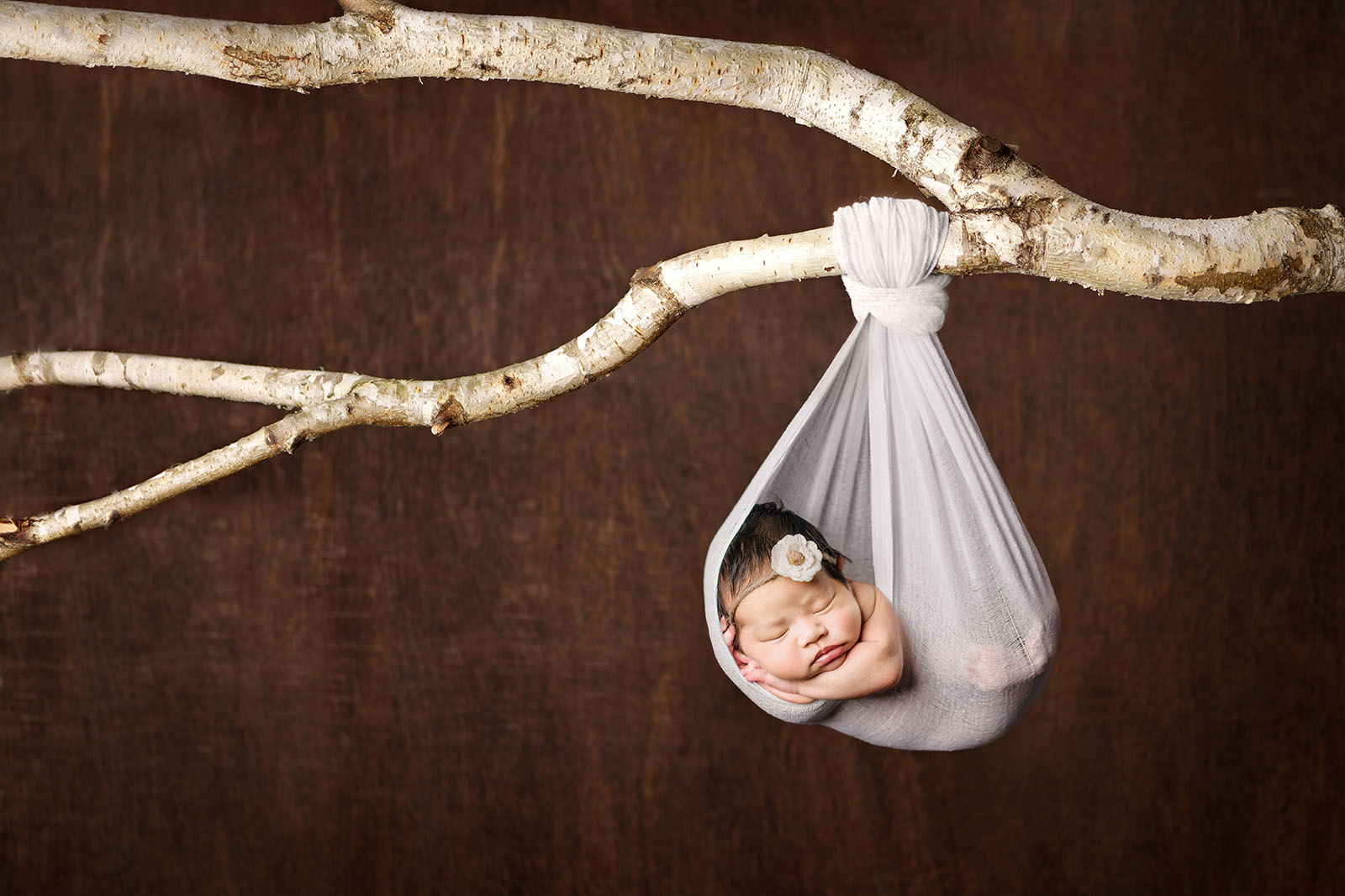 A newborn composite photo of baby in blanket