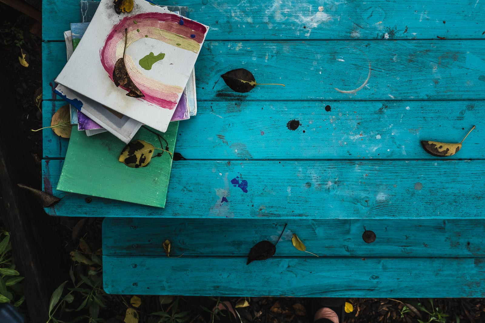 Paintings on a blue picnic table: What's next for the photographer mom?