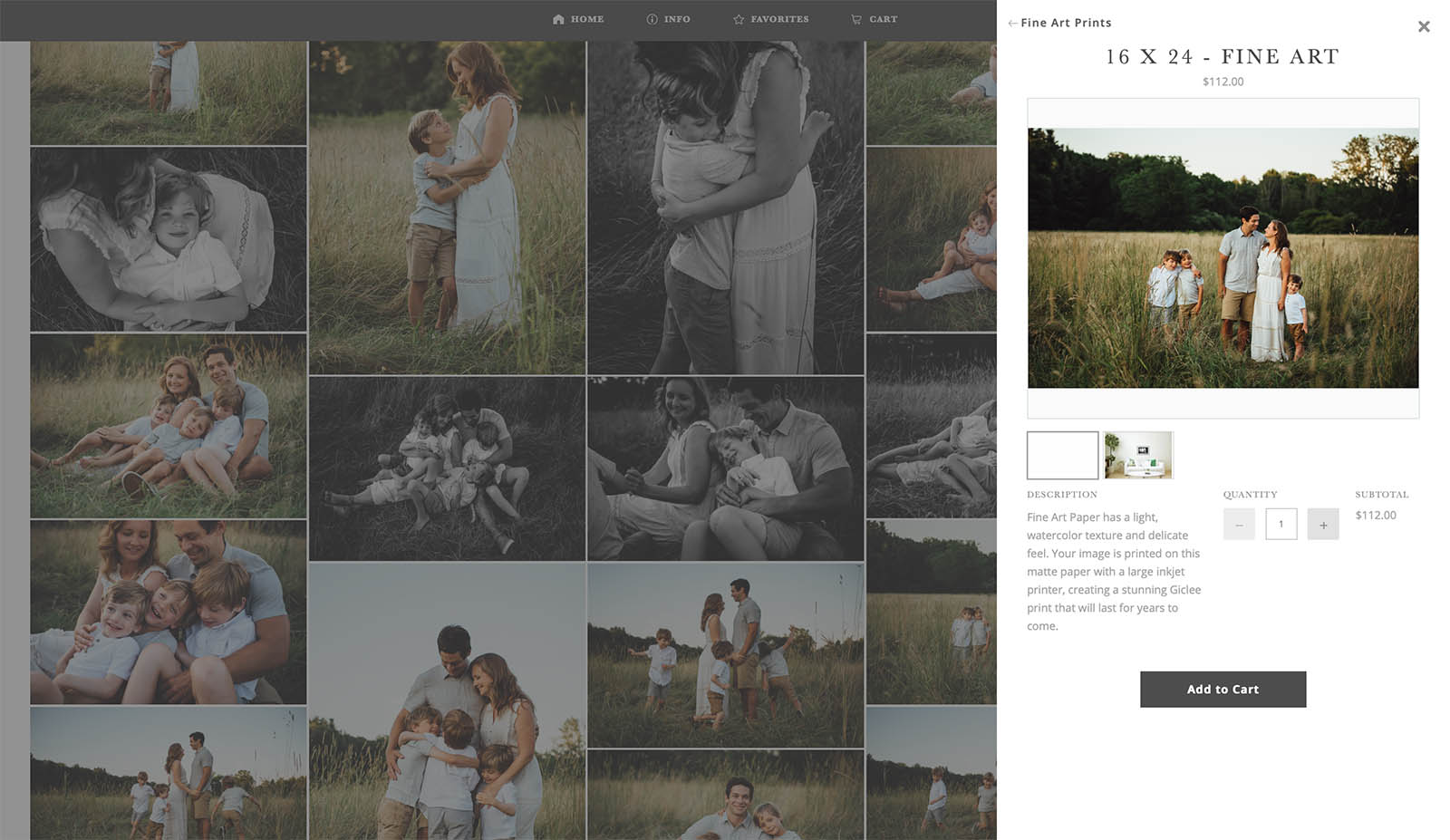 Screenshot of Shootproof photography management platform