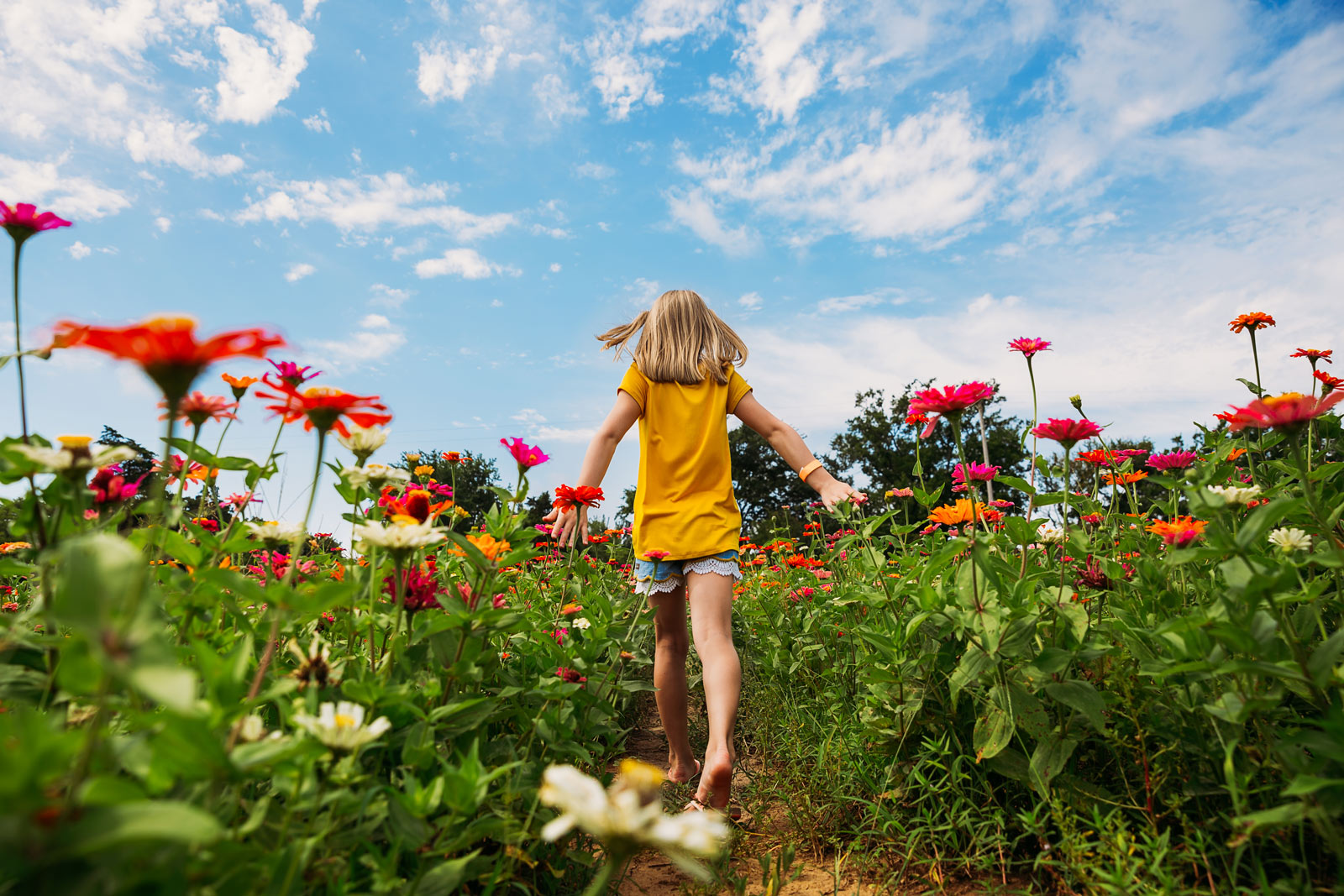 Girl walking through flower field with dramatic blue sky background