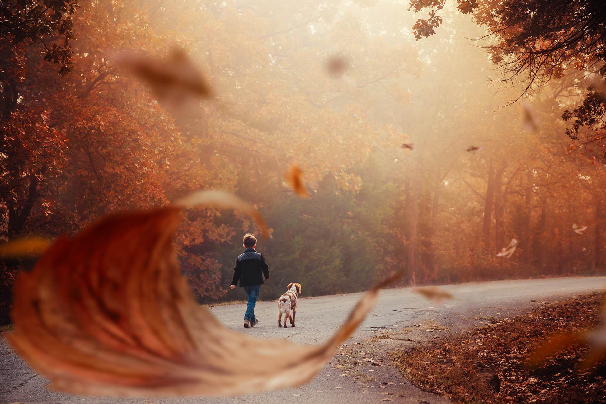 Boy walking with dog framed by leaf