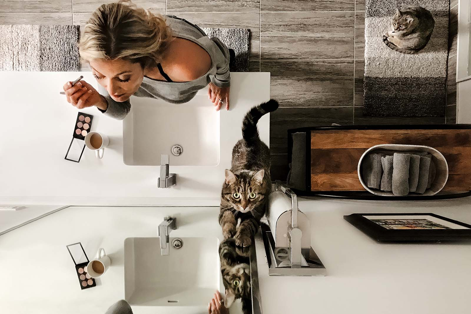 Click photo contest winner for smartphone photography category, selfie from above with cats