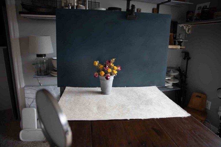 DIY photo hacks, flowers photographed with hand mirror reflector